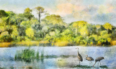 Digital Art - Crane Lake Evenings by Francesa Miller