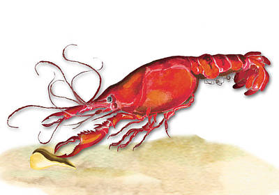 Art Print featuring the painting Crawfish by Anne Beverley-Stamps