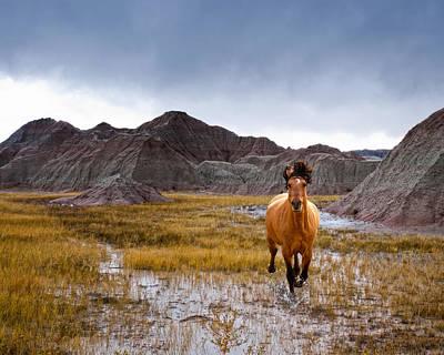 Crazy Horse Art Print by Ron  McGinnis