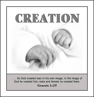 Photograph - Creation Poster by Trudy Wilkerson