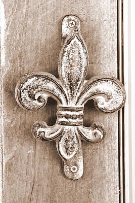 Photograph - Creole Knocker by Hannah Miller