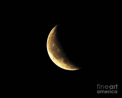 Luna Photograph - Crescent Close Up by Al Powell Photography USA