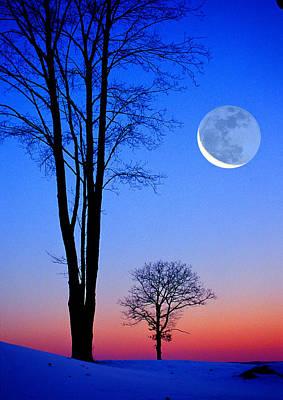 Crescent Through Trees Art Print