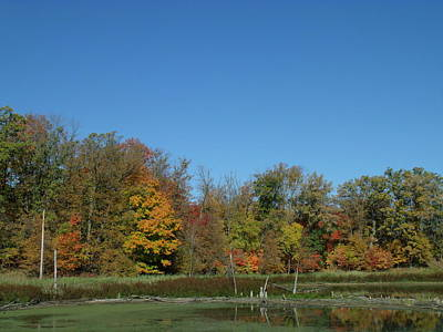 Crisp Fall Day In Minnesota Art Print