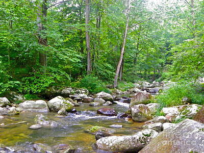 Art Print featuring the photograph Crooked Creek by Eve Spring
