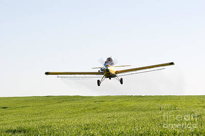 Photograph - Crop Duster by Cindy Singleton