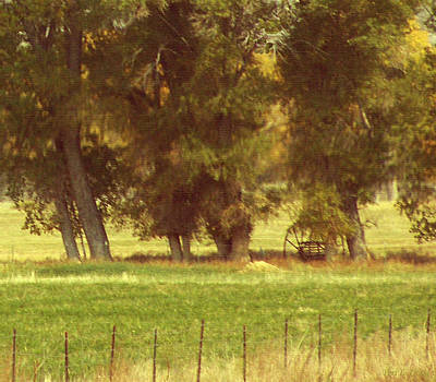 Photograph - Crops Are In by Peri Craig