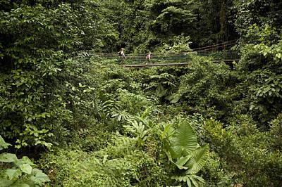 Danum Valley Conservation Area Photograph - Crossing A Suspension Bridge by Tim Laman