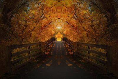 Photograph - Crossing Over - Color by Anthony Rego
