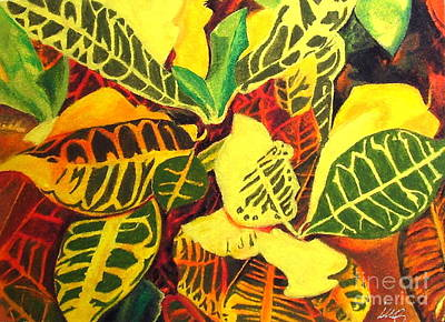 Still Life Drawings - Croton Joy by Iris M Gross