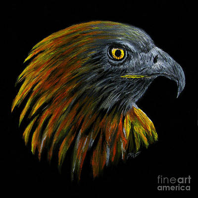 Crowhawk Art Print by Peter Piatt