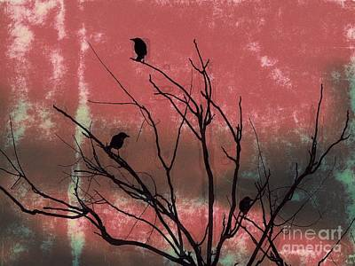 Tripple Photograph - Crows The Watcher by Sacred  Muse