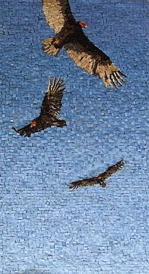 Vulture Mixed Media - Cruising The Updrafts by Michael Kruzich