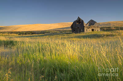 Photograph - Crushed By Time by Idaho Scenic Images Linda Lantzy