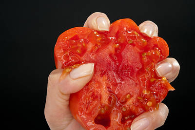 Photograph - Crushed Tomato by Johnny Sandaire