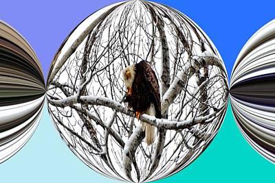 Eagle Digital Art - Crystal Ball Eagle by Don Mann