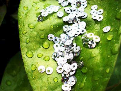 Crystal Dew Drops On Leaf Art Print by Sumit Mehndiratta