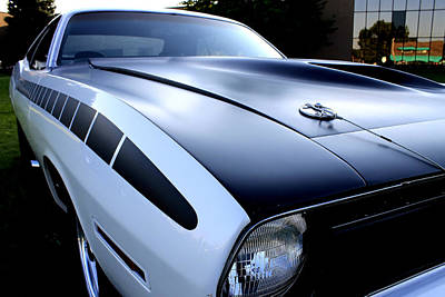 Photograph - Cuda 2 by Scott Hovind