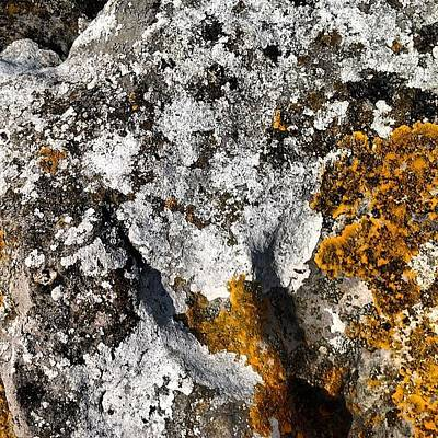 Rock Photograph - Cumbrian Lichens by Nic Squirrell