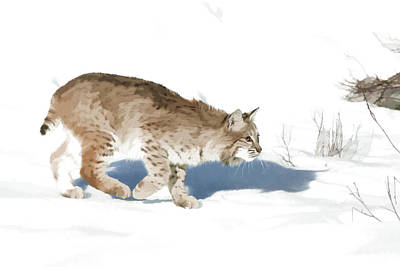 Cunning Cat Feet Art Print by Dewain Maney