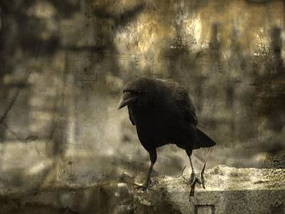 Ravens In Graveyard Photograph - Curiosity Of The Graveyard Crow by Gothicrow Images