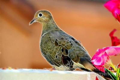 Seeking Digital Art - Curious Dove by Mariola Bitner