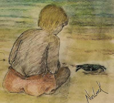 Drawing - Curious by Thomas J Norbeck