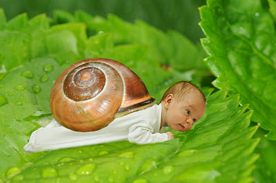 Macro Digital Art - Cute Baby Boy With A Snail Shell by Jaroslaw Grudzinski