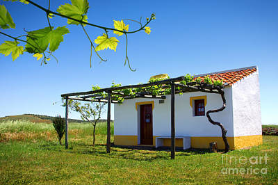 Alentejo Photograph - Cute House by Carlos Caetano