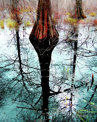 Photograph - Cypress Lake Martin by Lizi Beard-Ward