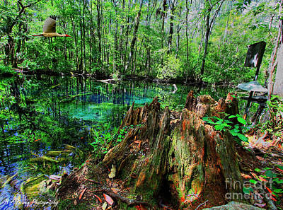Digital Art - Cypress Stump At Buford Spring by Barbara Bowen