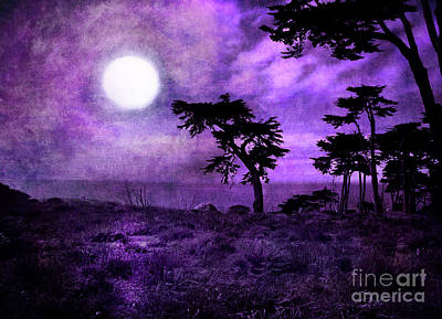 Monochromatic Digital Art - Cypress Trees At Sutro Heights by Laura Iverson