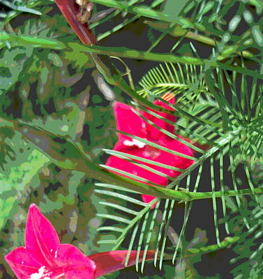 Impressionist Style Photograph - Cypress Vine Flowers And Foliage by Padre Art