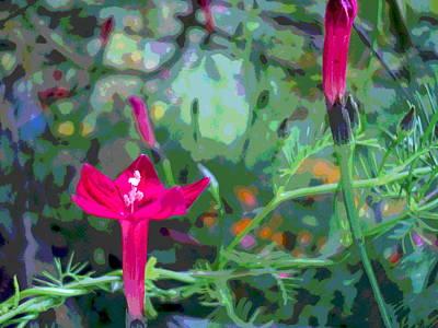 Impressionist Style Photograph - Cypress Vine Jungle by Padre Art