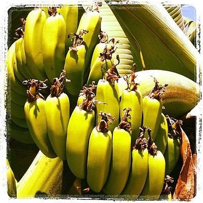 Banana Photograph - #cyprus #banana #coralbay #cyprus12 by Craig Kemp