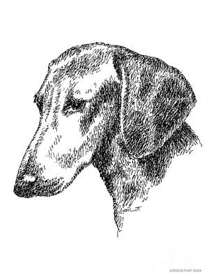 Drawing - Dachshund-drawing by Gordon Punt