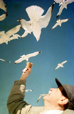 Photograph - Dad And The Seagulls by Emanuel Tanjala