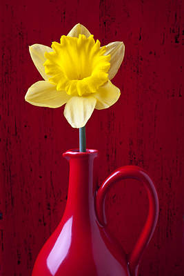 Yellow Daffodils Photograph - Daffodil In Red Pitcher by Garry Gay
