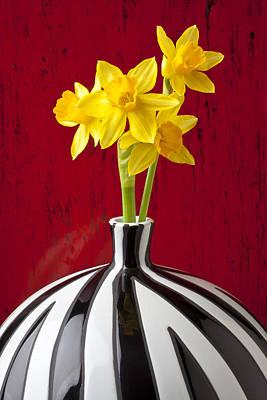 Daffodils Art Print by Garry Gay