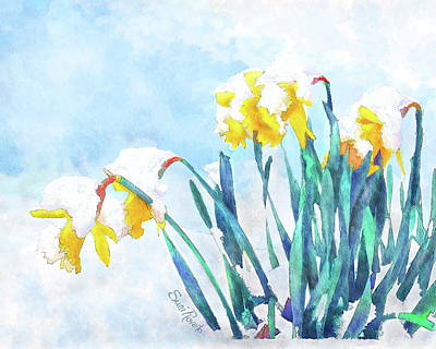 Painting - Daffodils With Bad Timing by Suni Roveto