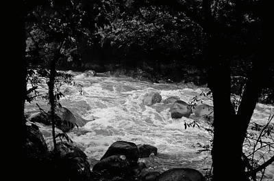 Photograph - Daintree National Park Rain Forest Rapids by Harry Strharsky