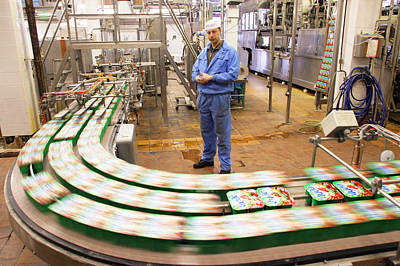 Dairy Factory Production Line Art Print by Ria Novosti