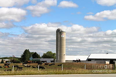 Photograph - Dairy Farm by Pamela Walrath