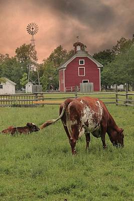 Photograph - Dairy Farm by Scott Hovind