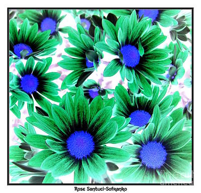 Negative Effect Digital Art - Daisies Negative Inverted Effect by Rose Santuci-Sofranko