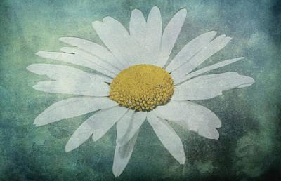 Daisy Art Print by Dawn OConnor