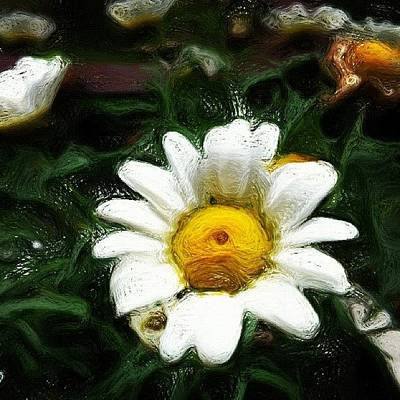 Naturediversity Photograph - Daisy #paintings by Jason Fang