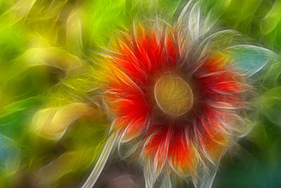 Art Print featuring the photograph Dalia Pseudo Fractal by Lynne Jenkins