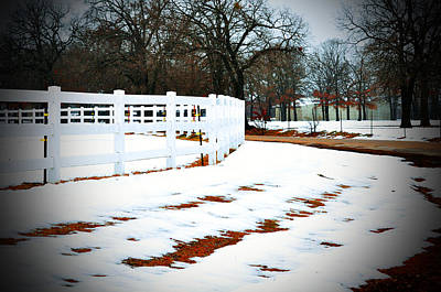 Photograph - Dallas Snow by Helen Haw