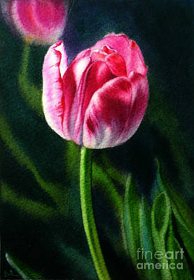 Painting - Dancing Tulip IIi by Arena Shawn